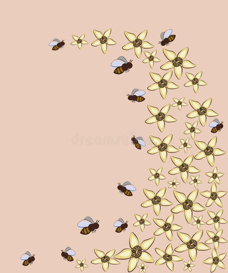 蜂和花在桃红色背景 背景和纹理 库存例证