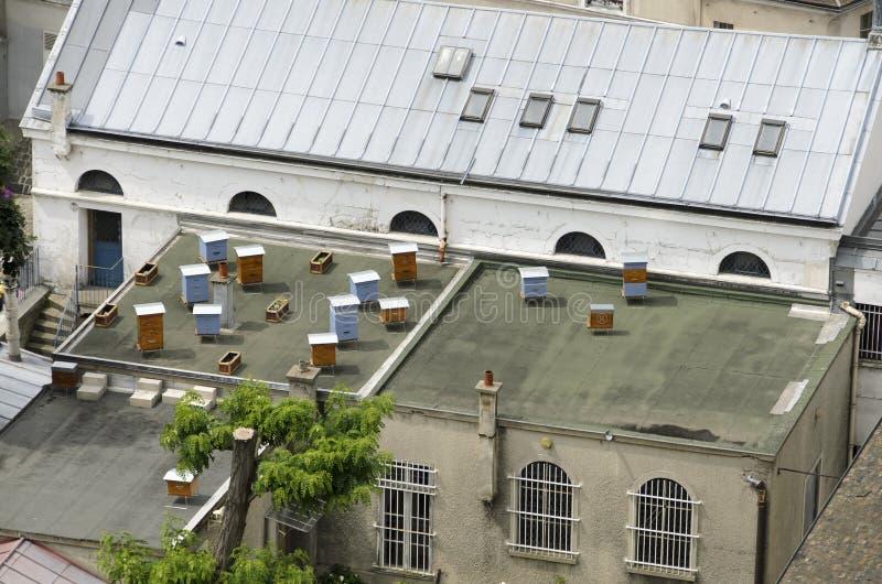 蜂房在城市 免版税库存图片