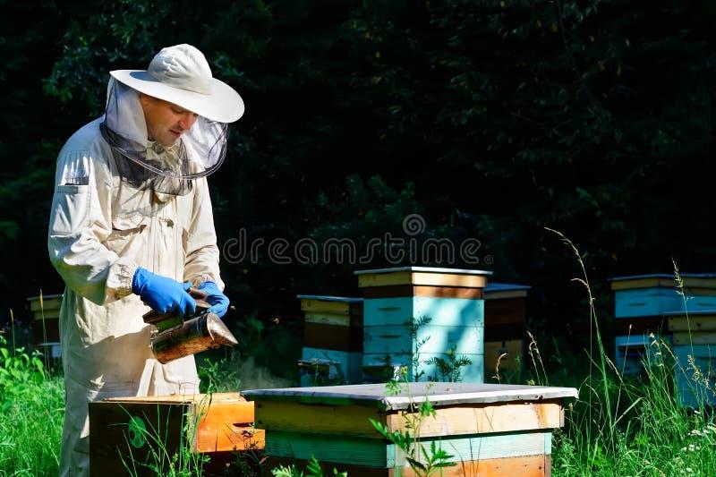 蜂房的蜂农 蜂农与蜂和蜂箱一起使用在蜂房 养蜂概念 库存图片
