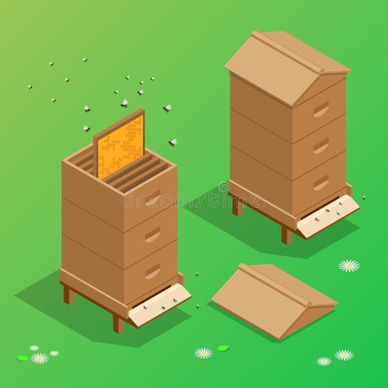 蜂房蜂蜜养蜂场蜂房传染媒介例证 库存例证