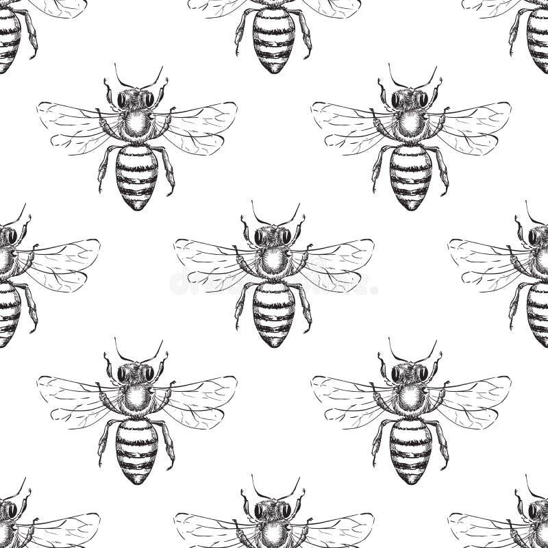 蜂无缝的传染媒介样式 蜜蜂的剪影例证 时尚纺织品印刷品或蜂蜜包装的背景设计 皇族释放例证