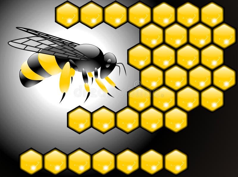 蜂海报向量 库存例证