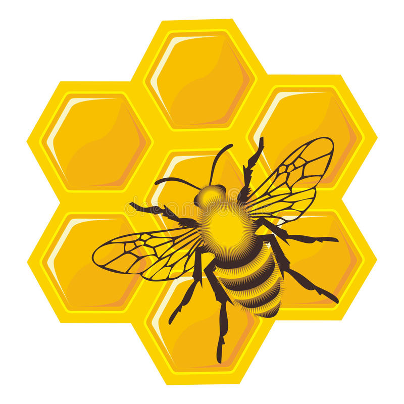 Download 蜂电池蜂蜜 库存例证. 插画 包括有 黄色, 携带用床盖, 设计, 寻呼机, 金子, 蜂蜜, 要素, 敌意 - 22350298