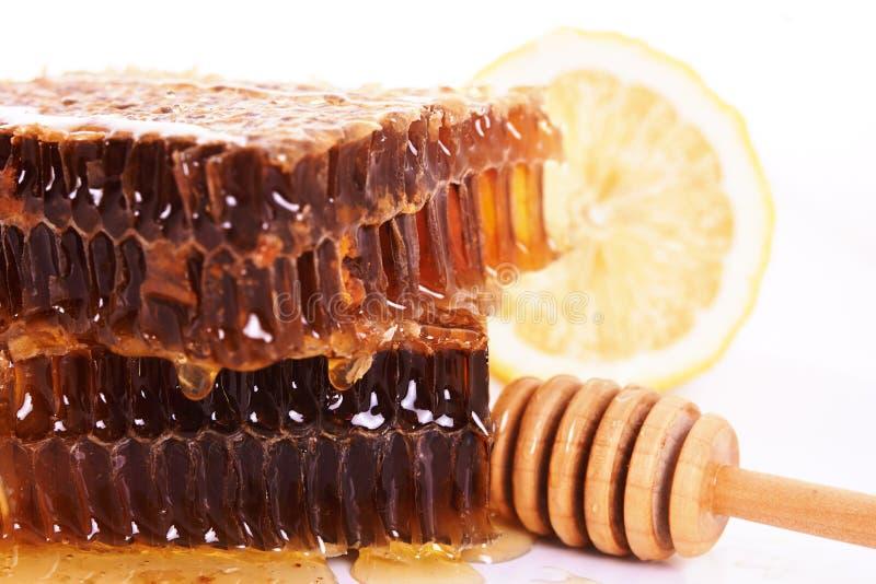 蜂窝用蜂蜜 库存图片