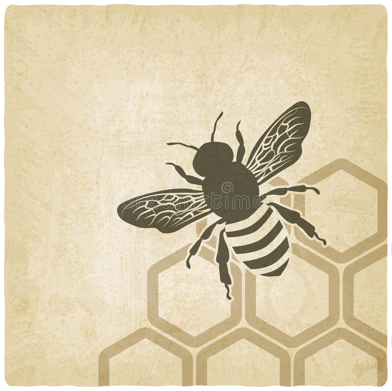 蜂老背景 向量例证