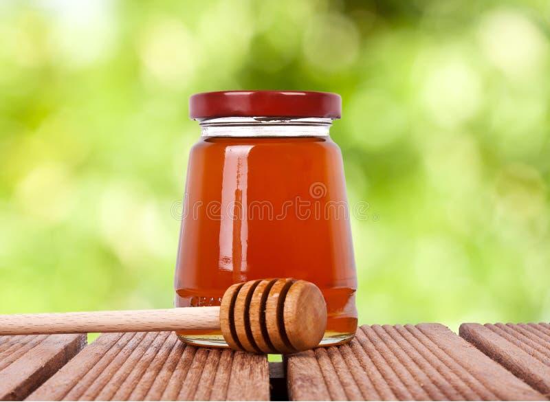 蜂蜂蜜虫蜇数据条 免版税库存照片