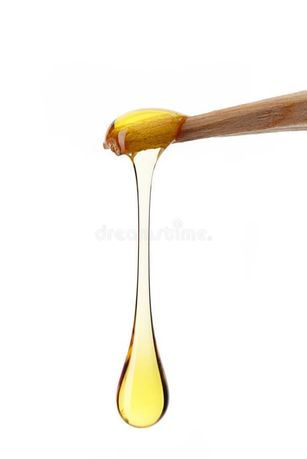 蜂蜜下落  图库摄影