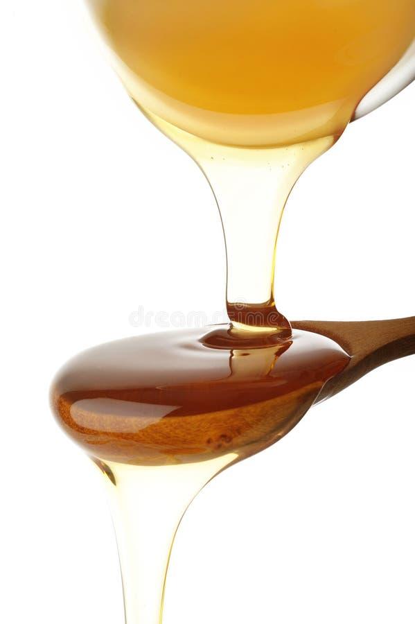 蜂蜜倾吐 免版税库存照片