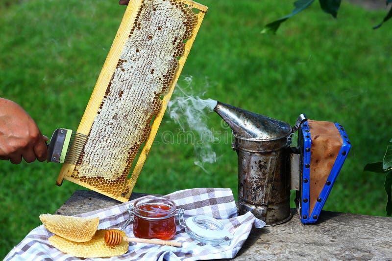 蜂蜜梳子用由蜂做的蜂蜜在木灰色土气背景 开盖与特别养蜂业叉子的蜂农蜂窝 库存照片