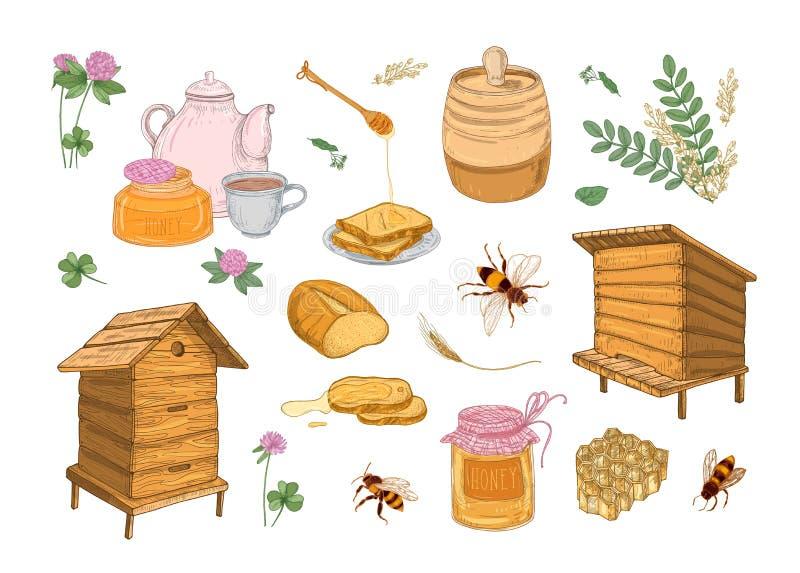 蜂蜜生产、养蜂业或者养蜂属性-蜂窝,木蜂箱,浸染工,蜂,桶的汇集 皇族释放例证
