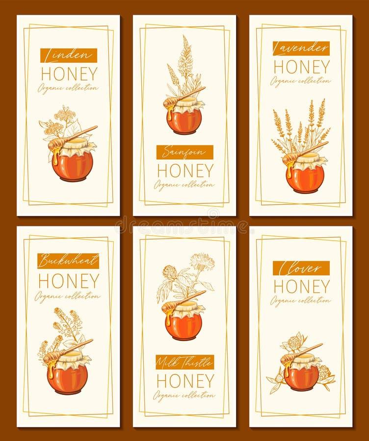 蜂蜜花复古垂直传单设计 雕刻的三叶草、牛奶蓟和含玻璃蜜罐和 向量例证