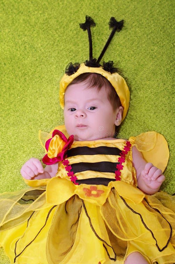 蜂蜜蜂婴孩 图库摄影