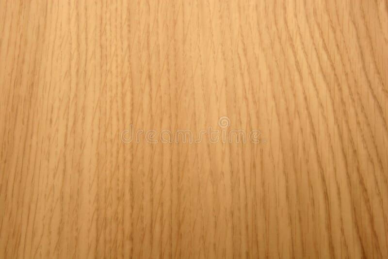 蜂蜜赤栎木五谷纹理 免版税库存照片