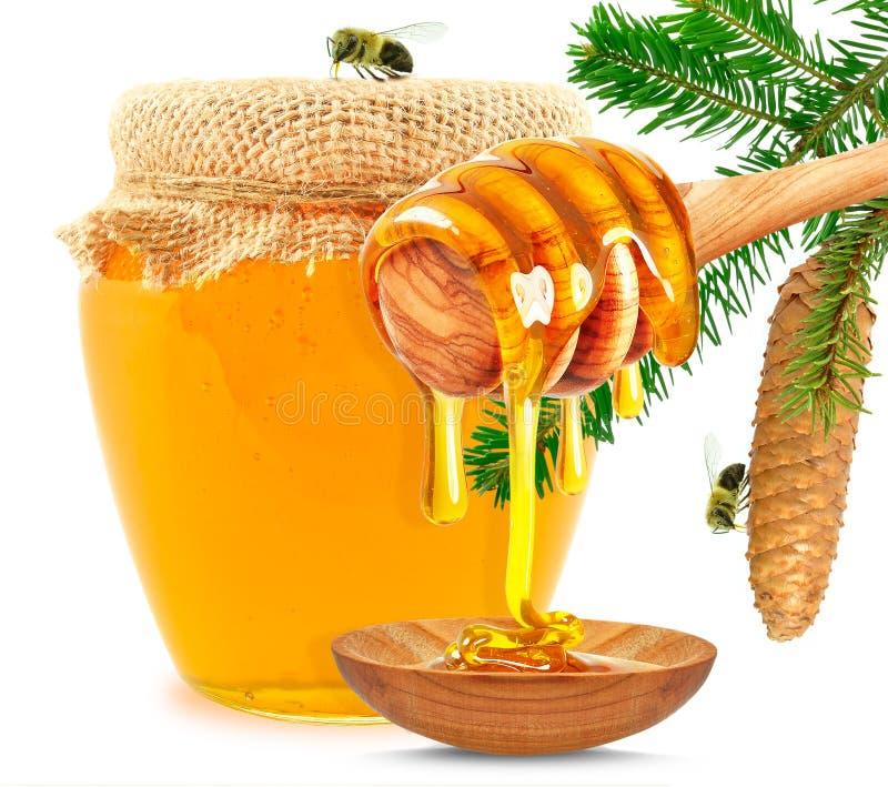蜂蜜水滴 免版税库存图片