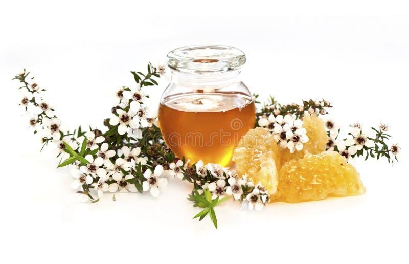 蜂蜜manuka 图库摄影