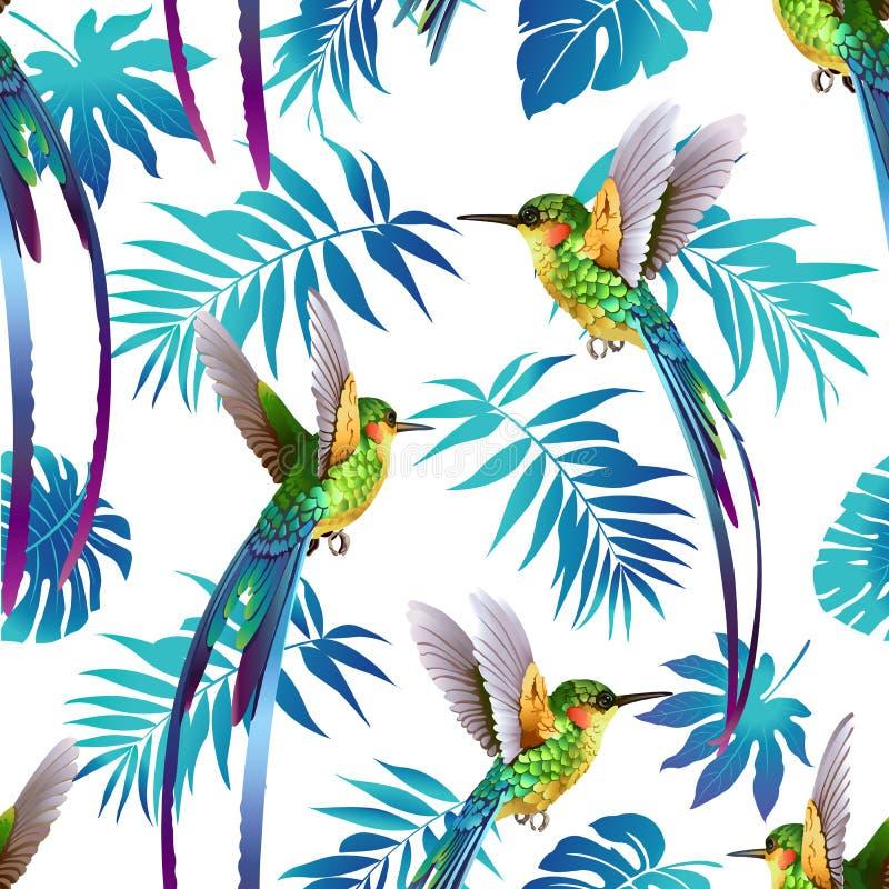 蜂鸟和热带花背景 模式无缝的向量 皇族释放例证