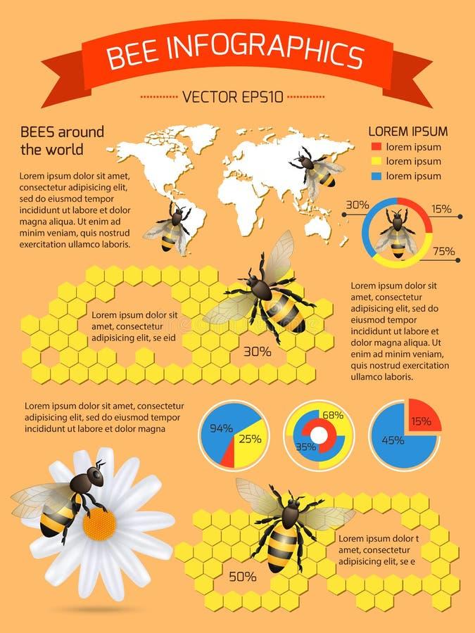 蜂infographics集合 皇族释放例证