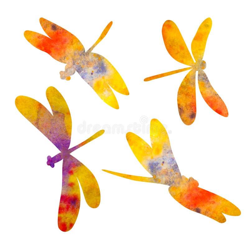 蜻蜓剪影 额嘴装饰飞行例证图象其纸部分燕子水彩 查出在白色 向量例证