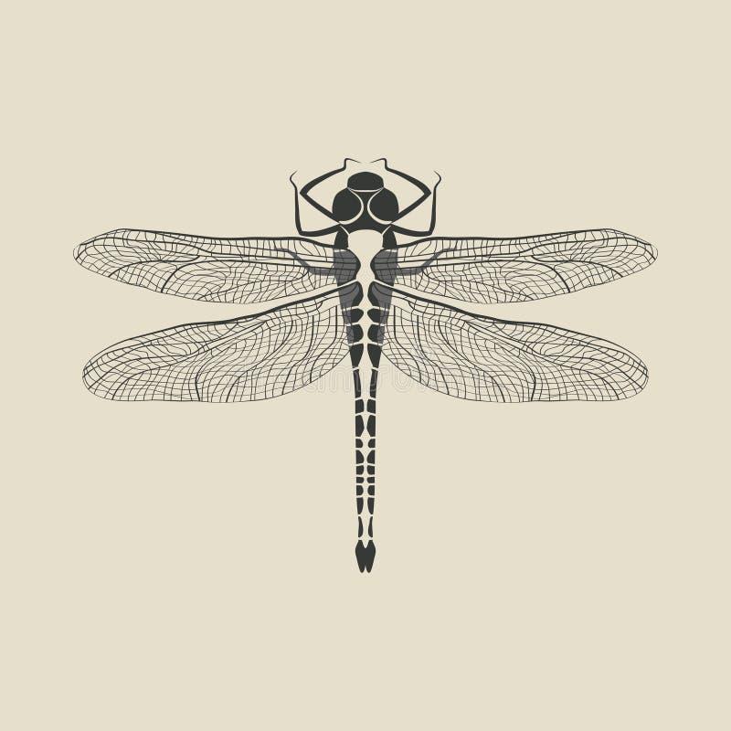黑蜻蜓昆虫 向量例证