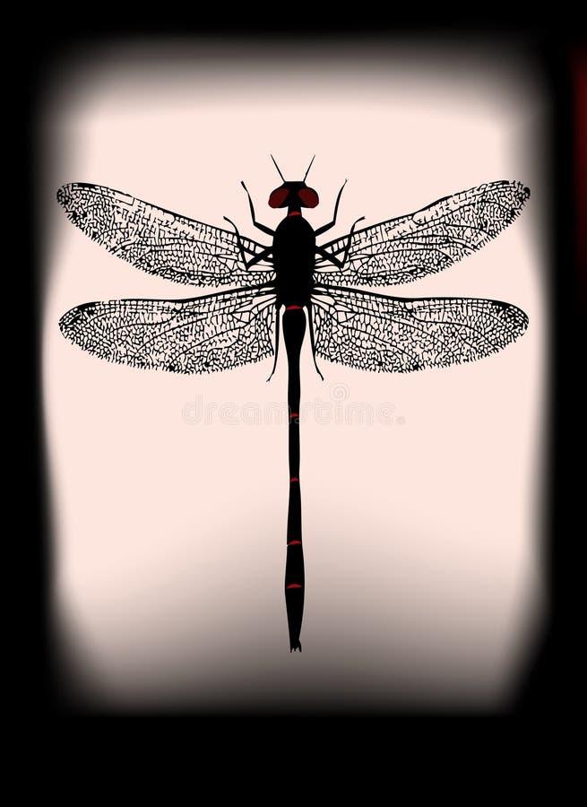 黑蜻蜓 向量例证