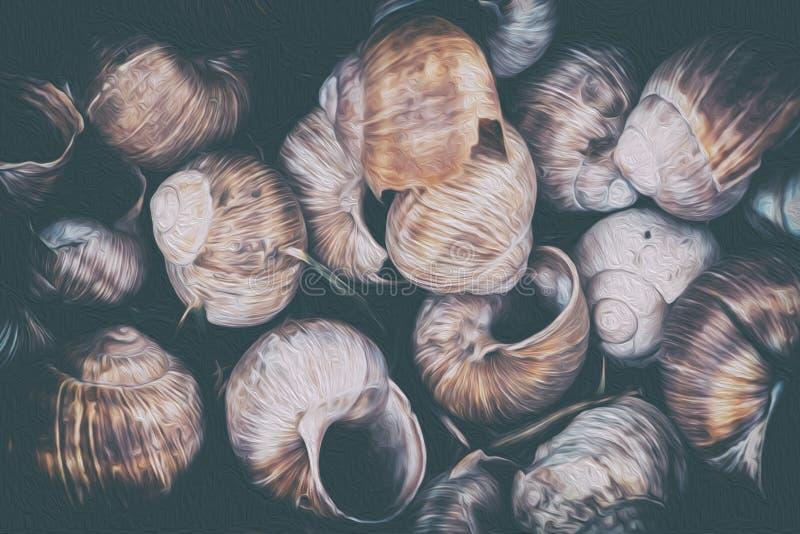 蜗牛壳 库存照片