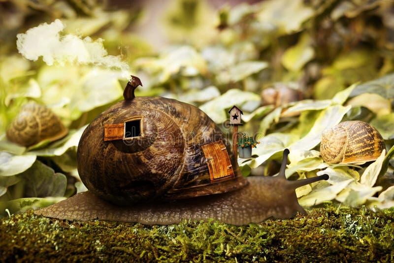 蜗牛房子 皇族释放例证