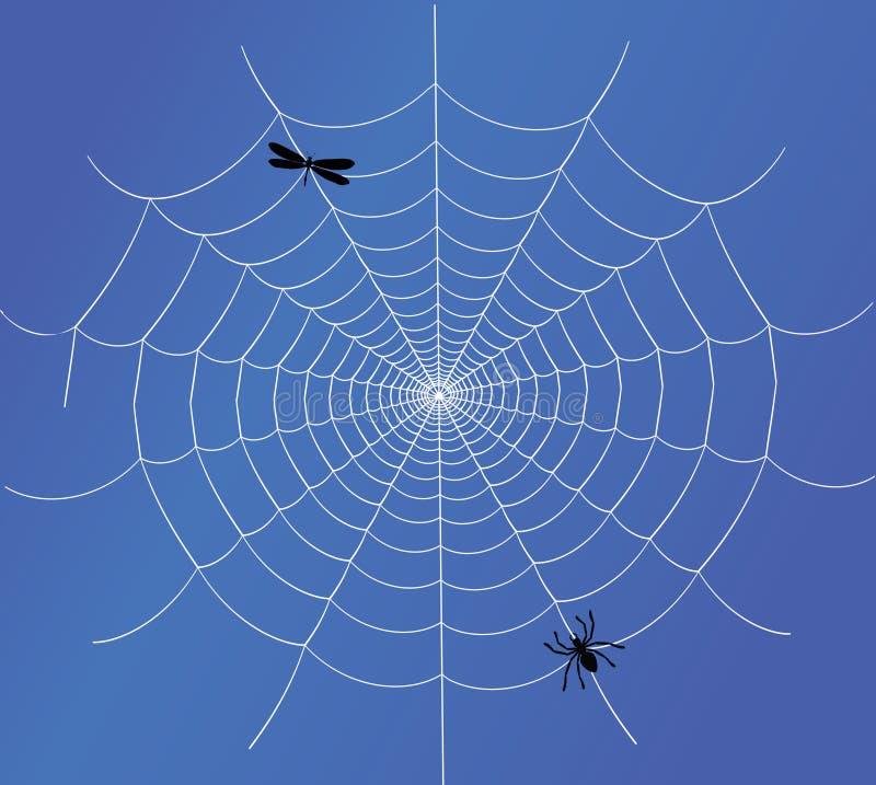蜘蛛向量万维网 库存例证