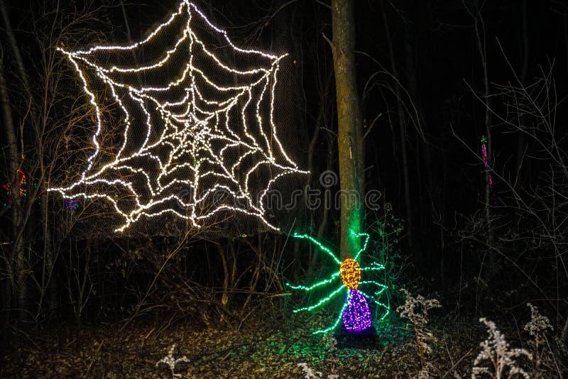 蜘蛛和网圣诞灯展示 库存图片