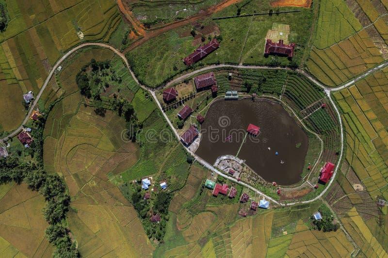 蜘蛛网位于Meler村庄的稻田鸟瞰图, Ruteng,弗洛勒斯,印度尼西亚 库存照片