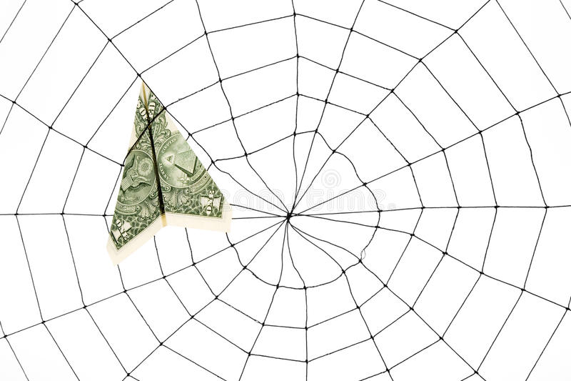 蜘蛛网和美元 图库摄影