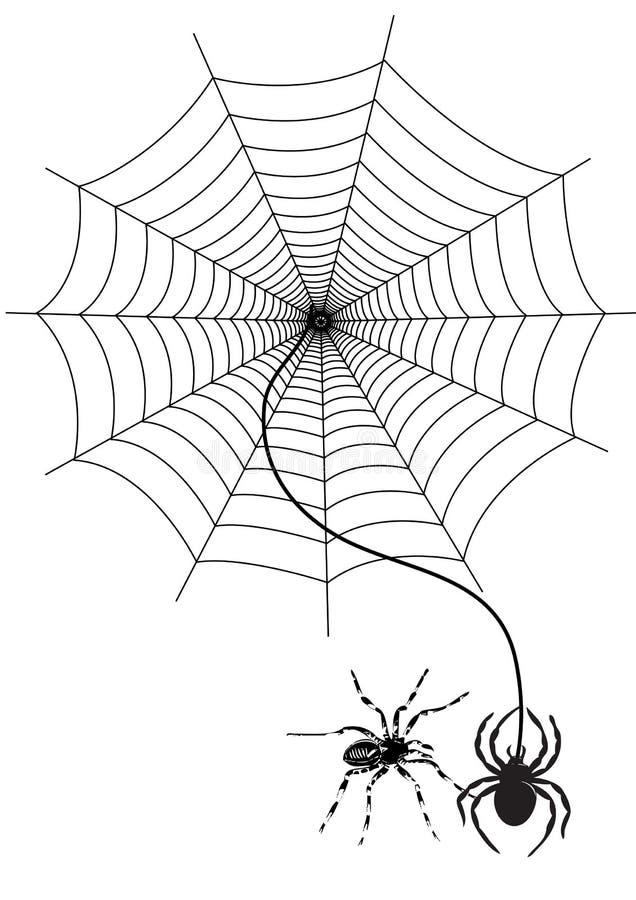 蜘蛛网 库存例证