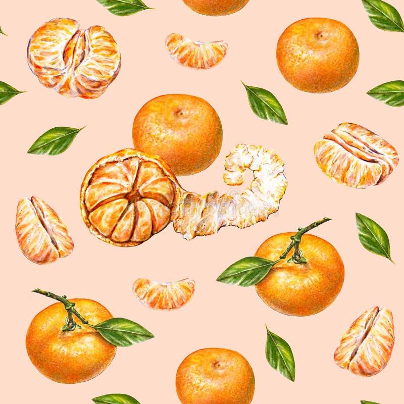 蜜桔 画开花的河结构树水彩绕的银行 成熟被剥皮的蜜桔 手工 热带的果子 健康的食物 设计的无缝的模式 库存例证