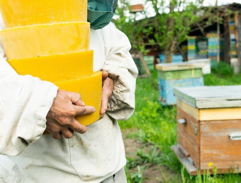 蜡以圆的形式在蜂农的手上 在蜂房的养蜂业工作 r 库存照片