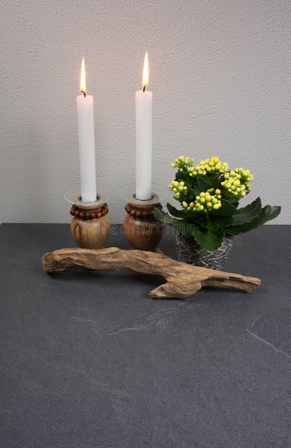 蜡烛与kalanchoe室内植物和装饰的光气氛从在灰色背景的漂流木头与您自己的te的拷贝空间 库存照片