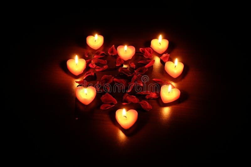 蜡烛瓣上升了 免版税库存图片