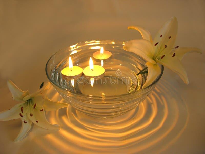 蜡烛花温泉 库存照片