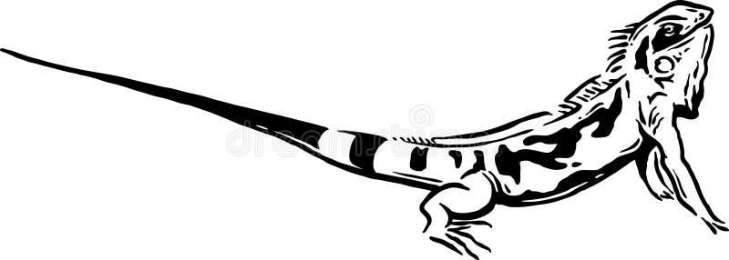 蜥蜴 向量例证