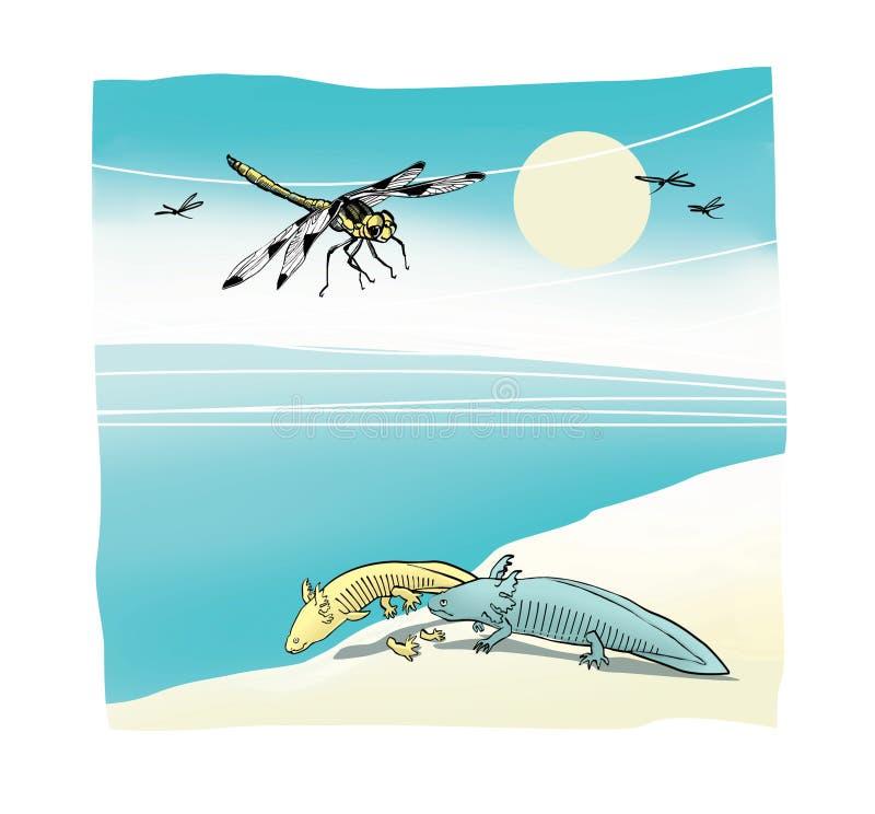 蜻蜓和变形ambistomy axolot 生态恐怖 幽默剪影 背景查出的白色 库存例证