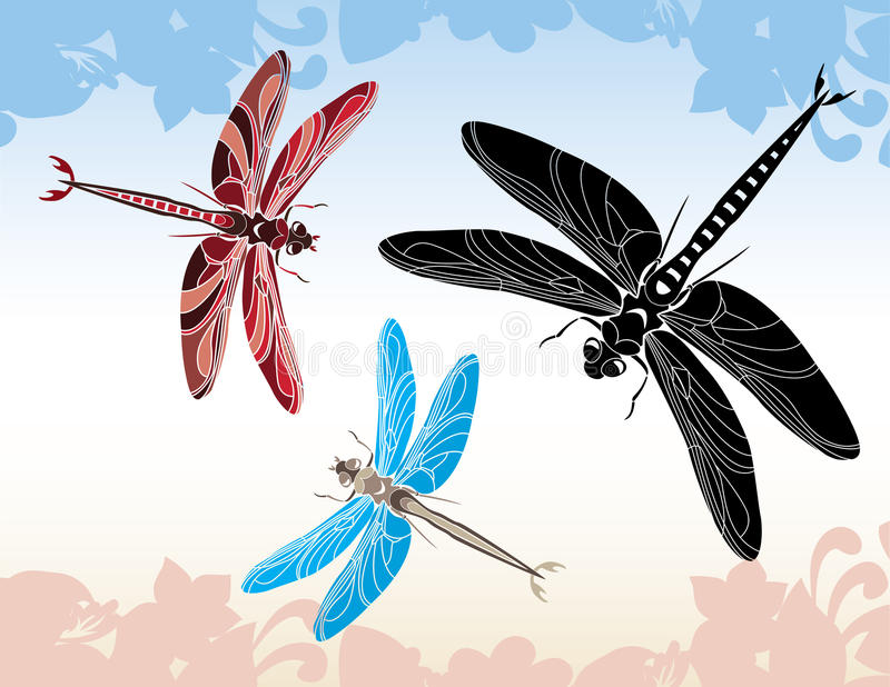 蜻蜓集合钢板蜡纸 皇族释放例证