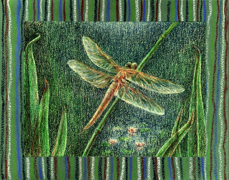 蜻蜓 皇族释放例证