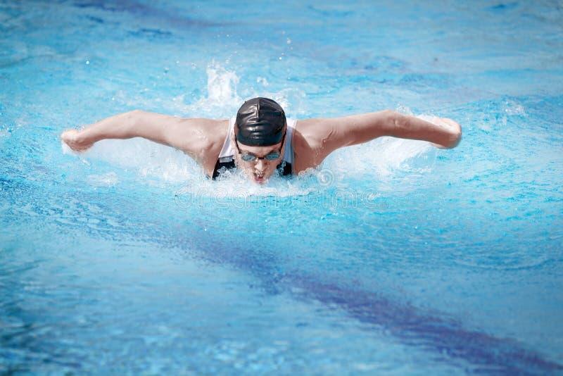 蝴蝶前执行的冲程游泳者 库存图片