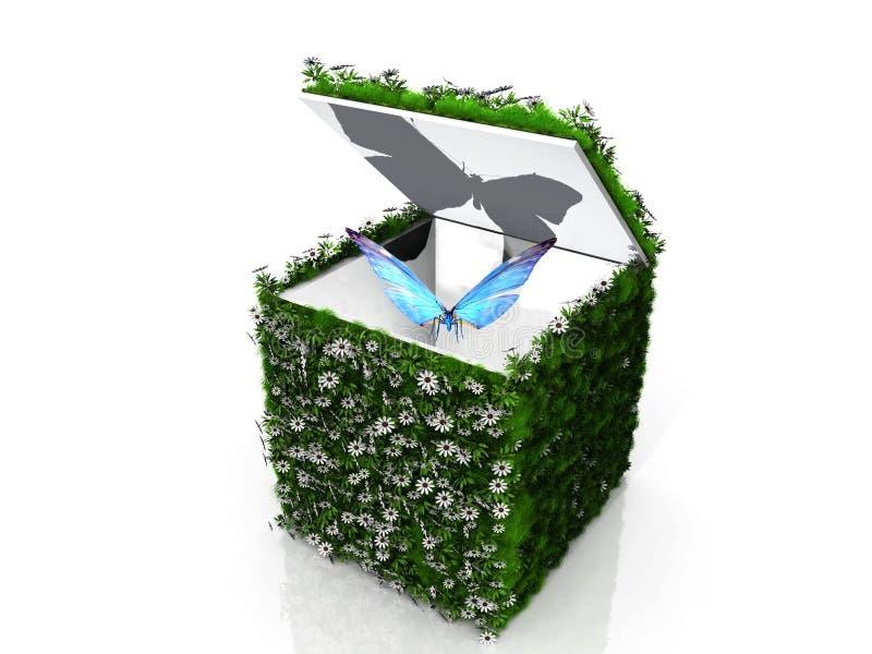 蝴蝶和绿色配件箱 皇族释放例证