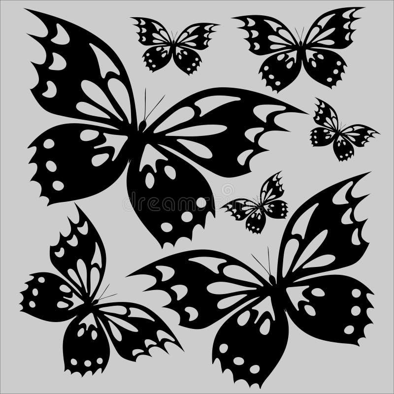 蝴蝶在白色背景T恤杉印刷品染黑 免版税库存照片