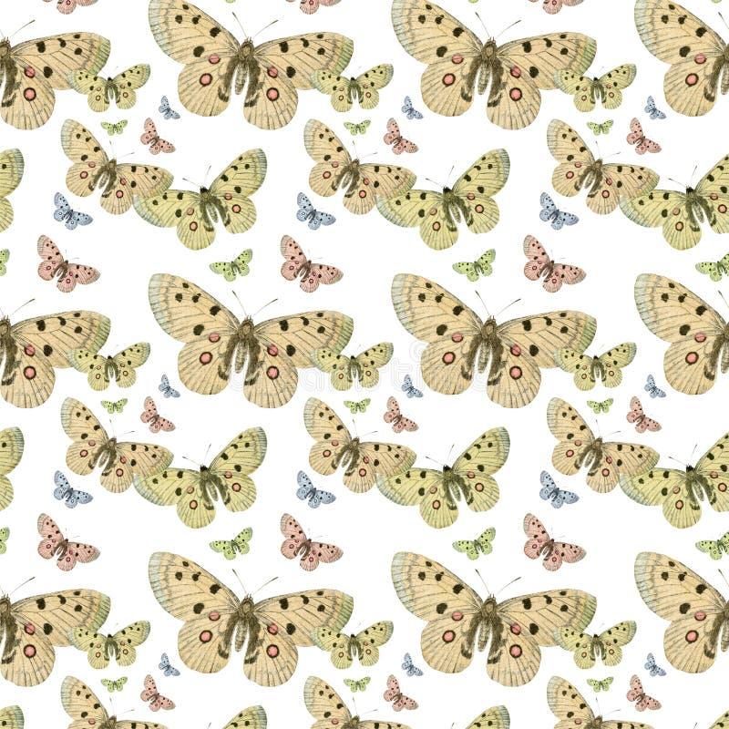 蝴蝶无缝的重复模式背景 免版税库存照片