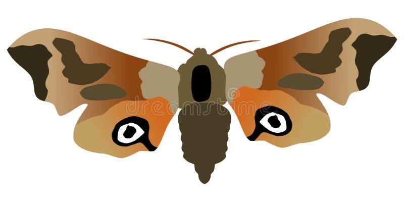 蝴蝶注视天蛾 皇族释放例证