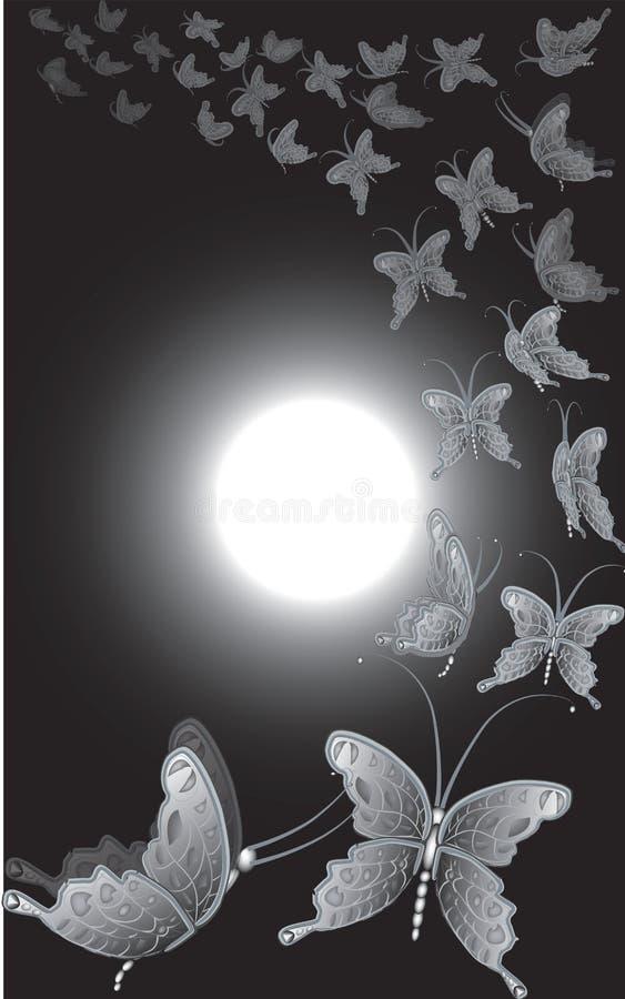 蝴蝶满月 库存照片
