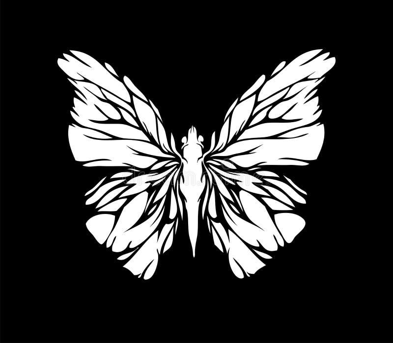 蝴蝶白色 图库摄影
