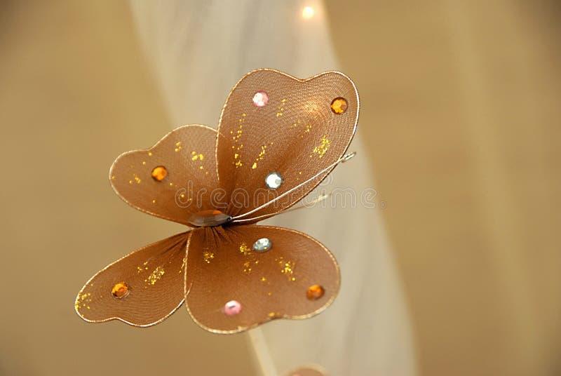 蝴蝶装饰 库存图片