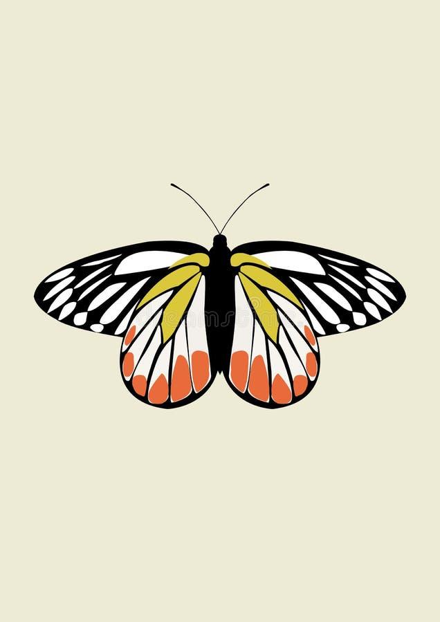 蝴蝶象传染媒介 库存照片