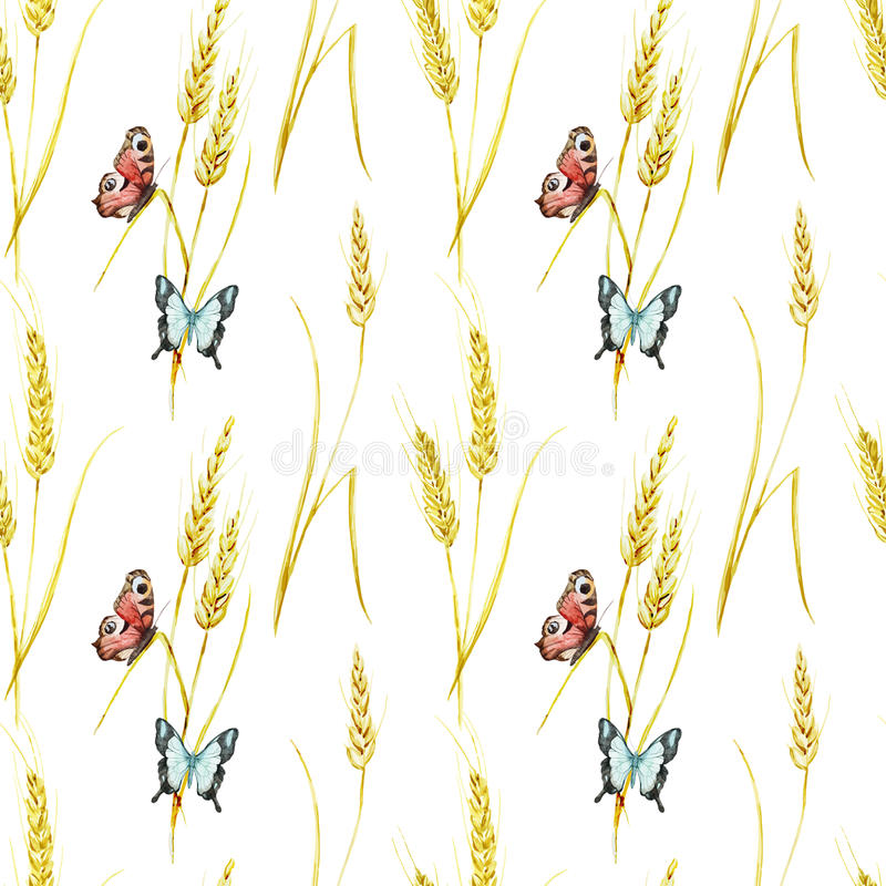 蝴蝶和麦子样式 皇族释放例证